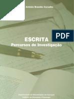 Escrita, Percursos de investigação