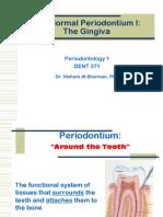 The Normal Periodontium 1-Gingiva