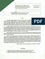m25_2012_comentario_texto.pdf
