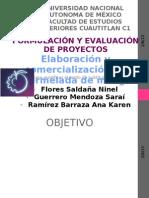 124241658-Elaboracion-y-Comercializacion-de-Mermelada-de-Mango-Balance.pdf