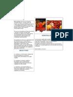 98917909-Despulpado-de-Frutas.docx