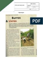 Ficha Sobre Reportagem