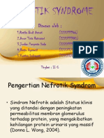 PPT NEFROTIK SYNDROME.ppt