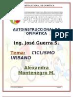 AUTOINSTRUCCIONAL DE OFIMÁTICA