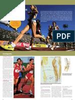 David-Lopez-Capape--Rodilla-del-corredor.pdf