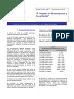 NotaTecnica7_2010_MicroempresasCapacitacion