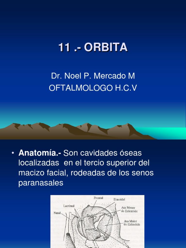 11 Oftalmologia Basica Orbita
