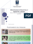 PPT inserción laboral PcDi