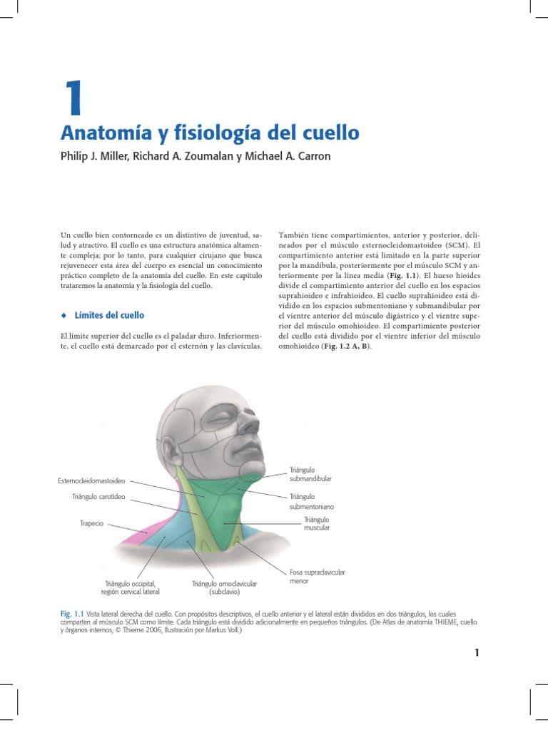 bc-pdf-003