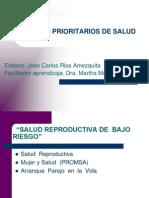 Programas Prioritarios de Salud