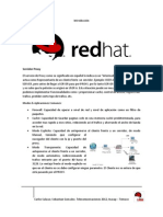 Manual PROXY Red Hat 6.1