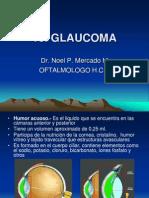 10 Oftalmologia Basica Glaucoma
