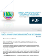 fusiontransformacinyescision-100215220009-phpapp01