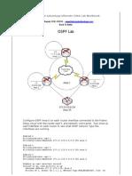 08.OSPF Lab