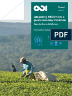 Integrating REDD Into a Green Economy Transition