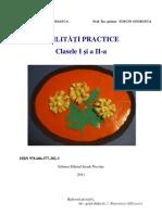 Abilitati Practice - Cls. I-II
