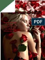 17623244 Livro Romance Um Mar de Rosas