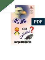(Ebook - Evangélico) Livro - Jorge linhares - Livro Quem é você Águia ou galinha