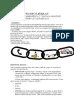 PRIMEROS AUXILIOSupt12