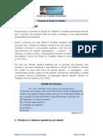 PRINCÍPIOS DO DIREITO DO TRABALHO.docx