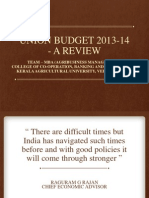 budget review 2013