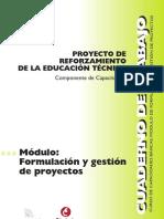 formulaciondeproyectos-110209170719-phpapp02.pdf