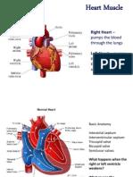 Physio Heart