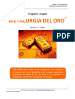 Programa Integral Metalurgia Del Oro - Virtual Jul 2013