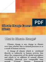 Climate Change Causes and Effects