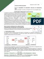 aminoacidoa