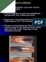 Mata Merah PP