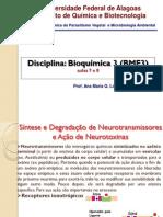 síntese e degradação de neurotransmissores