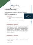 Informe Fundicon Blanca