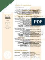 curriculum-vitae-modelo-arena.doc