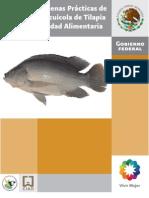 Manual_Tilapia.pdf
