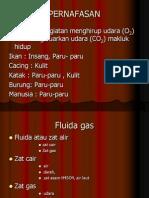 Fluida Gas