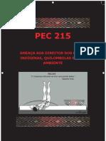 Caderno CIMI -  PEC215