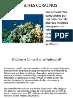 arrecifes y morfologia submarina.pptx