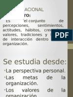 Sintesis de Cultura Organizacional