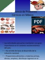 Importancia de ADMON Productos Cárnicos en México (1)