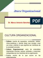 Cultura Organizac