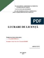 Instructiuni de Redactare Lucrare Licenta TPPA
