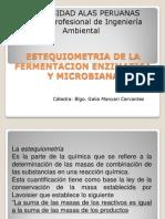 1 Estequiometria de La Fermentacion Enzimatica y Microbiana Primero
