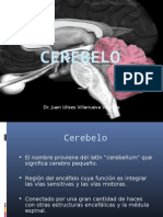 cerebelo (4)