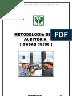 Manual Auditor Ohsas