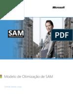 SAM Optimization Brochure Direct to Customer BRZ