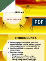 Cikungunya