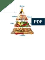 clasificasion de alimentos.docx