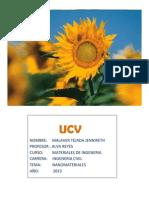 Oportunidades y Amenazas de La Nanotecnologia Jennireth PDF