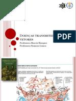 Doenças transmitidas por vetores_2013-1